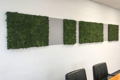 Planung und Gestaltung der Büroräume, Flure und der Aufenthaltsräume der Menten GmbH in Bergisch Gladbach.